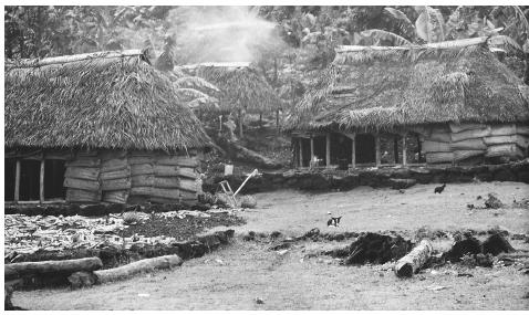 Fale houses in the village of Fituita.  Fale  homes were traditionally built with coral pebbles for flooring and sugarcane roof thatch.