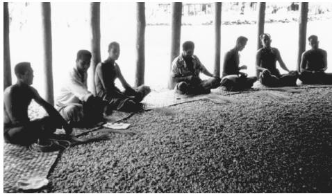 A village council meeting of chiefs. In American Samoa, village leadership is the function of a council made up of the chiefs, or  matai,  of each household.
