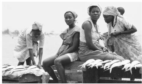 A group of women selling fish at Luanda Port. In general, Angolan women play a vital role in farming and food trading, while men are herders and wage laborers.