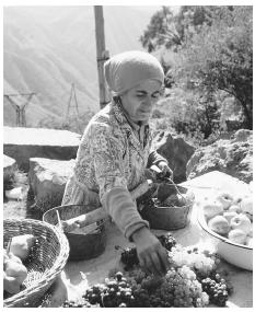 A woman sells fruit at a roadside stand. Armenia has focused on small-scale agriculture since gaining independence in 1991.