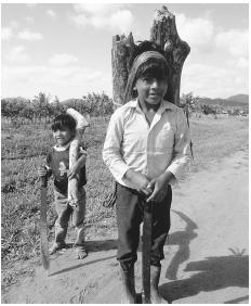 Two boys carry firewood in Maya Centre.