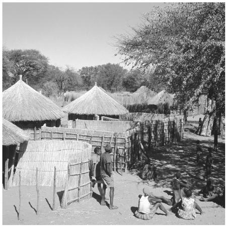 Villagers gather near thatch fences and huts in a Bayei village. Most urban residents still continue to maintain a house in their home village of origin.