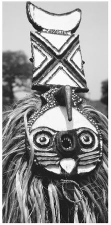 A Bobo wears a fish mask and a cape made of vegetable fiber for an agricultural festival. The Bobo are the largest ethnic group in western Burkina Faso.