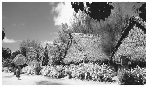 Thatched cottages and plants line a street in New Jerusalem, Aitutaki. These are some of the last remaining examples of traditional houses, called  Kikau.