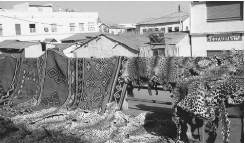 Tourists may purchase leopard skins and rugs at a market in Djibouti City.