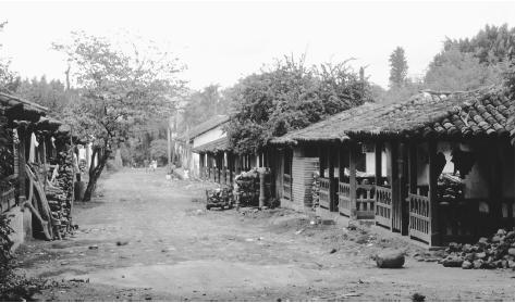 A road through the village of El Jocotal. Rural housing is typically built of adobe and features a large front porch.