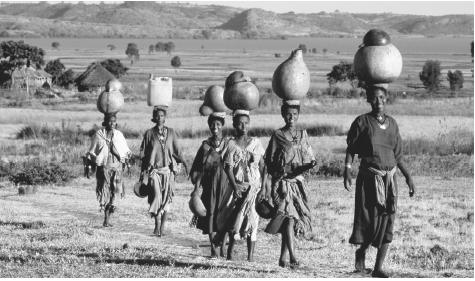 A group of women return from Lake Tana with jugs of water. Ethiopian women are traditionally in charge of domestic chores, while men are responsible for activities outside the home.
