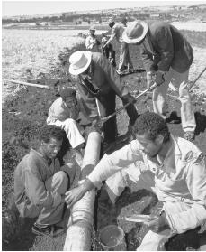 Workers installing a water pipeline for irrigation in Hitosa.