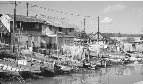Fishing boats are moored on the bank of Laussat Canal, and fishing nets hang out to dry in Cayenne. Shrimp and fish processing are major industries in the country.