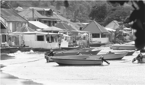 Houses and boats along the shore in the fishing village of Bourg, Terre-de-Haut, Iles des Saintes, Guadeloupe. Agriculture and fishing combined employ less than 8 percent of Guadeloupe's workforce.