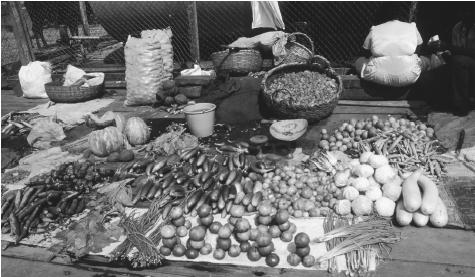 Produce displayed for sale at a market in Parika Quayside. Agriculture is Guyana's principal commercial activity.