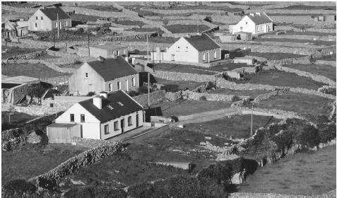 Walls separate individual fields on Inisheer, one of Ireland's Aran Islands.