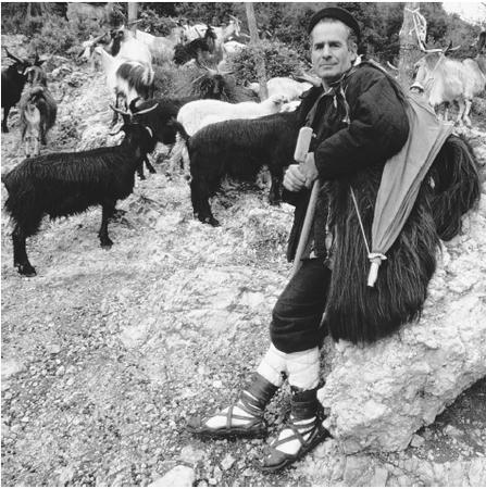 A mountain shepherd with goats in Lenola, circa 1985. After World War II, Italy began moving from an agricultural economy to an industrial economy.