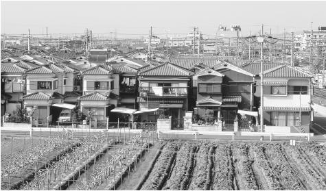 Irrigated fields in front of a housing development near Kyōto. Only about 15 percent of Japan is level enough for agriculture.