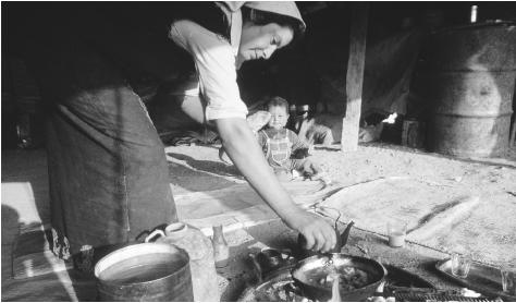 Bedouin woman preparing a meal. Free-wandering Bedouins have lived in the traditional way for thousands of years.