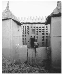 While architectural styles in Mali vary, most buildings are made of sun-baked clay.