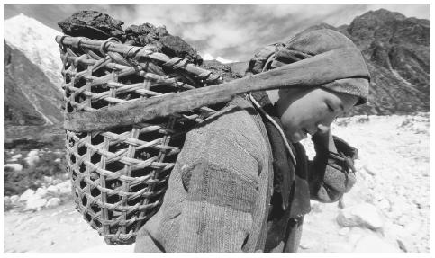 A Nepalese person carrying a wicker basket filled with fuel.