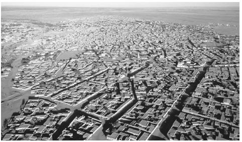 An aerial view of Agadez. Architecture reflects traditional regional and sedentarized-nomadic differences.