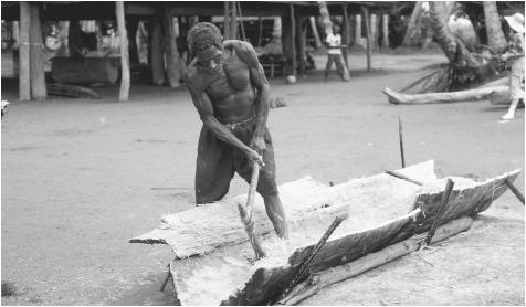 A man splitting a sago palm trunk using traditional tools.