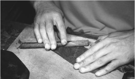 A man hand-rolls cigars for the Bayamón Tobacco Corporation, the last family-owned cigar producer in Puerto Rico. They produce five thousand cigars per day.