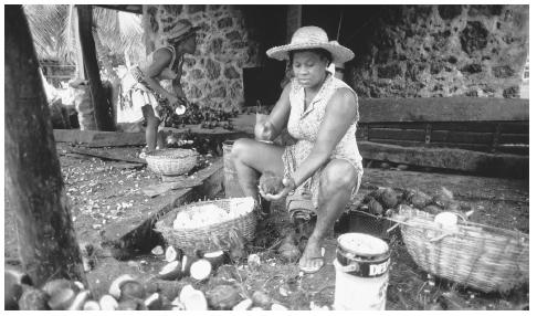Women process copra, or coconuts, in the Seychelles. The plantation sector of the economy is expected to decline.