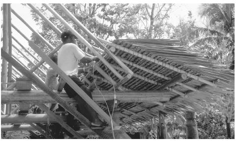 Workers tying thatch onto a new house in Honiara, Guadalcanal.