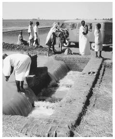 Several people gather at an irrigation canal in Gezira. The northern part of the country is desert.