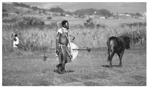 A Swazi warrior dressed in traditional costume. Males are very dominant in all aspects of Swazi society.