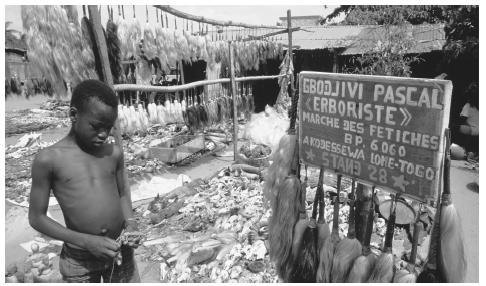 Des cheveux sont suspendus à des poteaux et des crânes gisaient sur le sol dans un marché fétichiste. Les cultes traditionnels du vodou sont populaires.