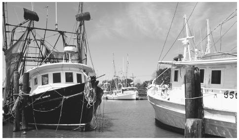 Fishing boats are anchored in the Lafourche Bayou in Cajun Country, Louisiana. Fishing is an important part of the Lousiana economy.