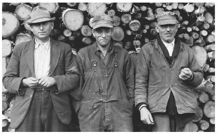 americans turn to farming during the great depression Effects of the great depression  the popularity of credit use during the 1920s also had a great impact on americans during the depression  turn off getting.
